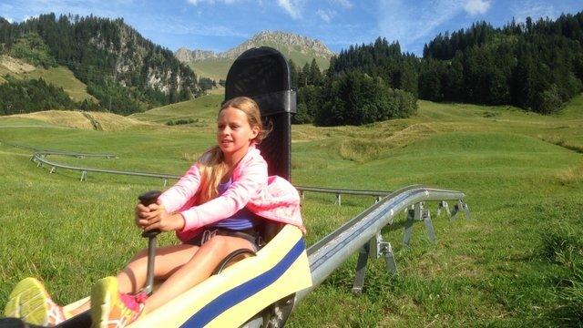 Summer sled run