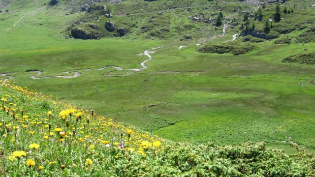 Naturschutzgeb Vallon de Réchy