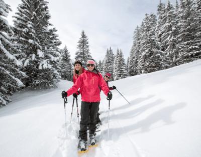 Schneeschuhwanderweg  - Gryon