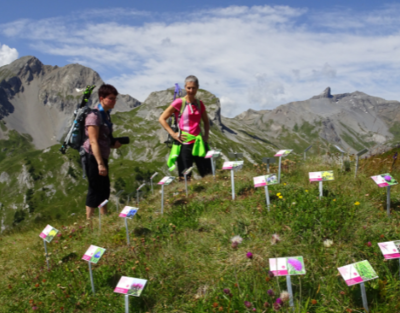 Flowers hiking